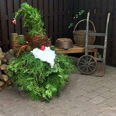 Juniper gnome on my terrace - Alles über Dekoration Christmas Scenes, Diy Christmas Tree, Outdoor Christmas Decorations, Christmas Colors, Rustic Christmas, Christmas Projects, Holiday Crafts, Christmas Time, Christmas Lights Outside