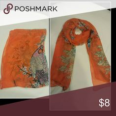 Orange Peacock Scarf New chiffon scarf Accessories Scarves & Wraps