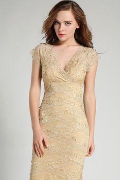 http://dresslinn.com/full-length-short-sleeve-layered-lace-dress-formal-gown-166.html