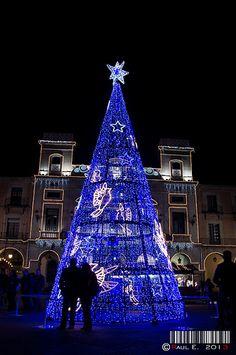Ávila en Navidad, de visita por los belenes de la ciudad Tower, Building, Travel, World, Nativity Scenes, Cities, Xmas, Rook, Viajes