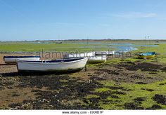 Row of boats on the mud flats at Emsworth Hampshire. Green seaweed contrasting with the blue sky. - Stock Image