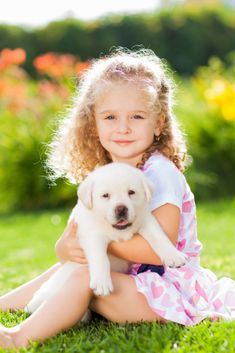 Little girl with a labrador puppy outdoor summer Cute Labrador Puppies, Cute Puppies, Golden Retriever Labrador, Golden Retrievers, Little Girl Pictures, Cute Baby Dogs, Cute Funny Animals, Animals For Kids, Dog Owners