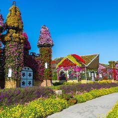 Vertical garden made with palette Source by Dubai Life, Dubai Mall, Dubai Tourism, Miracle Garden, Visit Dubai, Most Beautiful Gardens, Palette, Around The Worlds, Mansions