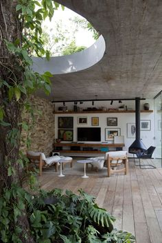 galeria indoor/outdoor tree