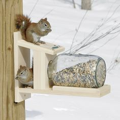Squirrel Jar Feeder - Best Picture For Birds DIY sew For Your Taste You are l Squirrel Feeder Diy, Squirrel Home, Diy Bird Feeder, Homemade Bird Houses, Homemade Bird Feeders, Bird Houses Diy, Wood Projects, Woodworking Projects, Woodworking Shop