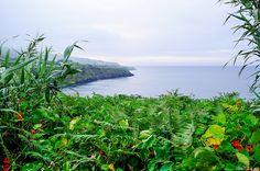 Capelas, São Miguel, Azores