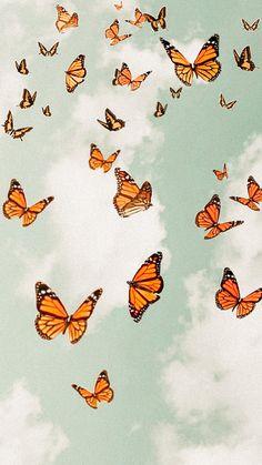 Flor Iphone Wallpaper, Butterfly Wallpaper Iphone, Mood Wallpaper, Homescreen Wallpaper, Iphone Background Wallpaper, Aesthetic Pastel Wallpaper, Photo Wallpaper, Aesthetic Wallpapers, Cute Tumblr Wallpaper