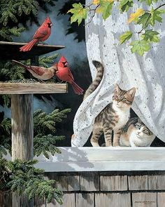 Curtain Call-Cats and Birds Art Print by Persis Clayton Weirs | Wild Wings