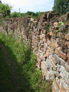 Ik hou ontzettend van 'oude' stenen muurtjes! Karakteristiek en rustiek, door de tijd heen gevormd!!