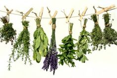 Dried Herbs and their uses.  Awesome site.
