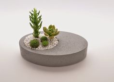 Classic contemporary refined simplicity well that s how david brumlin describes his work and it is all of that plus i thought i dArts And Crafts Beer ParlorOffset Planter - Ellipse in GraySet of 3 succulent concrete mini planters white oak houseGreat Diy Concrete Planters, Concrete Crafts, Concrete Projects, Concrete Design, Diy Planters, Cement Art, Garden Care, Diy Garden, Garden Ideas