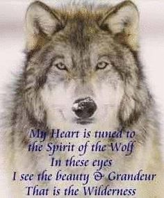 Be part of the pack, yet know who you are.   Isn't that right Mr Wolf?