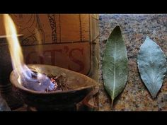 Burn A Bay Leaf In Your House   The Reason You'll Be Amazed !