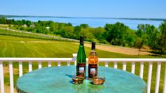 Toro Run Winery - great wine along Rt 89 on Cayuga Lake on the Fingerlakes… Finger Lakes Wineries, Selling Real Estate, Wine Country, The Locals, Wines, Places To See, How To Find Out, Road Trip, Running