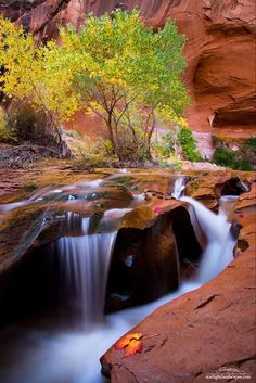 """Swiss Cheese Falls in Coyote Gulch, UT. Photo by Dustin LeFevre. This visual helps transport my thoughts to feeling more at peace and being more """"zen-like"""""""