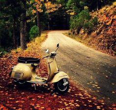 Fall winding roads and a Vespa Piaggio Vespa, Vespa Bike, Lambretta Scooter, Scooter Motorcycle, Scooter Images, Vespa Motor Scooters, Vintage Vespa, Classic Vespa, Enduro