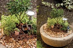 Garden sprites find a magical fairy-tale hideaway among the greenery to create these tiny garden treasures.