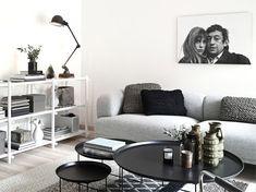 Modest scandinavian living room