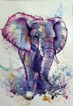 Painting ideas for beginners image elephant, elephant artwork, elephant pai Watercolor Paintings For Beginners, Watercolor Art Diy, Watercolor Art Paintings, Beginner Painting, Watercolor Animals, Animal Paintings, Animal Drawings, Art Drawings, Elephant Watercolor