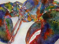 Lobster Watercolor By Judy Mercer