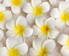 Alibaba グループ | AliExpress.comの 装飾花&花冠 からの 100ピースハワイアンプルメリアプルメリア人工シルク卵花頭結婚式の装飾4センチ 中の 100ピースハワイアンプルメリアプルメリア人工シルク卵花頭結婚式の装飾4センチ