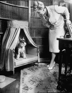 Marjorie Merriweather Post, heiress & founder of General Foods, chatting with her Mini Schnauzer