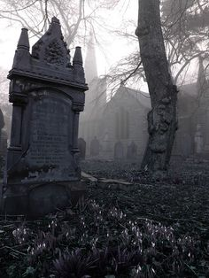 Grave in the mist