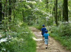 Looking for a great hike that won't kill you? These 9 trails are all under 5 miles and are perfect for beginners.