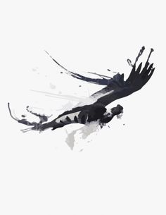 Condor Andean Condor, Black Art, Patagonia, I Tattoo, Tatoos, Tattoo Designs, Random, Logos, Painting