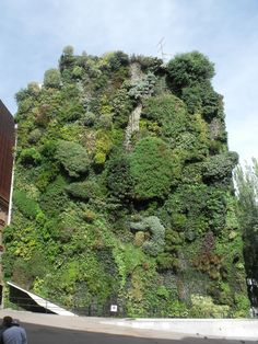 vertical garden spain madrid 2013