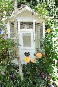 Ok, so this is a chicken coop, but i love it!