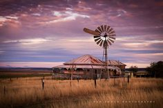 Evening near Felton, south west of Toowoomba, Qld. Australian Farm, Australian Icons, Farm Windmill, Australia House, Australia Travel, Old Windmills, Old Barns, Country Barns, Country Cottages