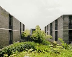 Galería de Humedal Xixi / David Chipperfield Architects - 7