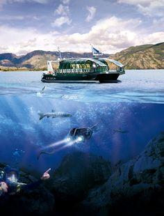 Descubriendo la magia de las profundidades del lago Douro, Fauna, Sci Fi, Boat, Spain, Lakes, Aquatic Ecosystem, Cruise, Parks