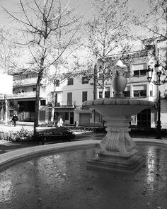 Hegemony ( Sant Pere de Ribes, Catalunya)