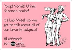 Poop! Vomit! Urine! Raccoon brains! It's Lab Week so we get to talk about all of our favorite subjects! #LabWeek. Laboratory Humor, Medical Laboratory Scientist, Happy Lab, Funny Labs, Lab Humor, Med Lab, Lab Tech, Tech Humor, Lab Rats