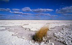 Makgadikgadi Salt Pans, Botswana  on the road to Maun