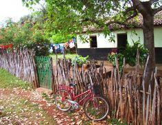No interior do Brasil. http://www.portalanaroca.com.br/gente-olha-que-lindeza-paz-e-sossego/