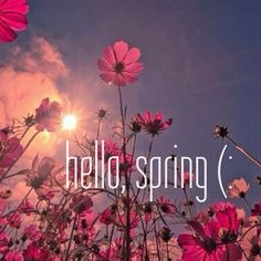 Hello spring.  on We Heart It - http://weheartit.com/entry/54122104/via/methodicallife