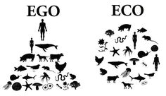 I choose ECO. ; )  Ps. I think I'll let a fish feed me tonight, at the Brigintine! (Fish Taco Tuesday!)