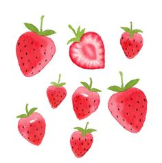 Watercolor Strawberries Clipart Set Fruit Food Summer   Etsy Strawberry Png, Strawberry Clipart, Watermelon Clipart, Strawberry Drawing, Dibujos Cute, Posca, Printable Stickers, Printable Party, Cute Drawings