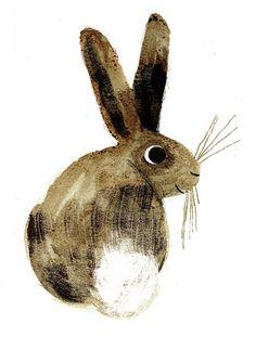 Image result for older bunny illustration