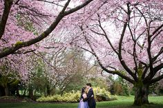 A&J Engagement Shoot | Vancouver Wedding Photographer | Paraphrase Productions