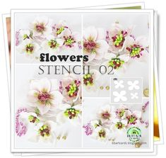 Bar, Stencils, Scrapbooking, Paper Crafts, Diy Wall, Inspiration, Flowers, Biblical Inspiration, Tissue Paper Crafts