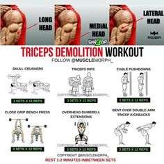 """7,946 Likes, 26 Comments - MuscleMorph® (@musclemorph_) on Instagram: """"Want To build better Triceps? Try this workout SAVE it so you can use it at the gymLIKE/FOLLOW…"""""""