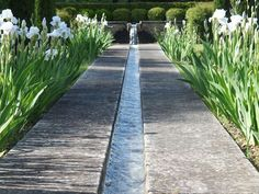 modern,cement water channel, for M and M.                              … Architectural Landscape Design