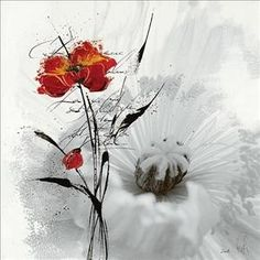 affiche de coquelicot sur fond de fleur