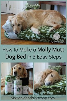 A DIY tutorial on how to make a molly mutt dog bed by upcycling your old belongings. Diy Dog Bed, Cool Dog Beds, Homemade Dog Bed, Mutt Dog, Cool Dog Houses, Pet Beds, Doggie Beds, Doggies, Animal Projects