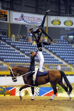A Team is the highest level of competition in the team division. A maximum of three vaulters may be on the horse at one time.