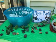 Warrior cats Moon pool